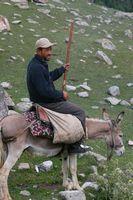 Местный житель и его транспорт. Передаёт привет альпинисту Юре из Перми.
