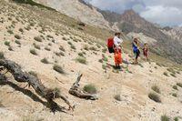 Долина реки Кек-Суу. Охотницы за дровами.